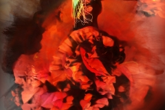 24x30 RED FLAMENCO EMI