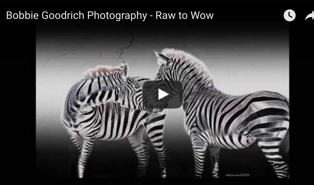 Bobbie-Goodrich-Raw-to-Wow-video-1024x606.png