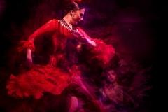 04 Flamenco