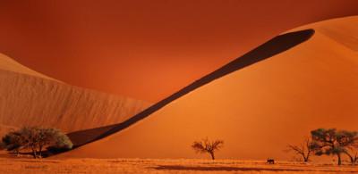 Sossusvlei, Nambia - Bobbie Goodrich