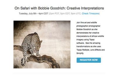 Bobbie Goodrich - Topaz Labs Webinar