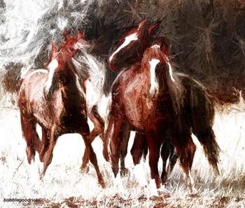 BG-Horse-350